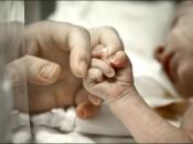 maternità-surrogata3-600x420